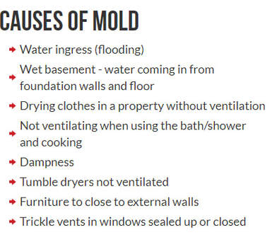 causes of mold